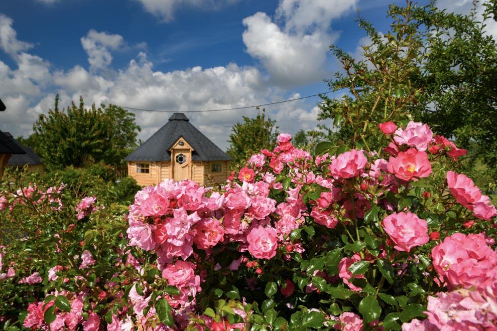 Chambre d'hôtes avec jardin et fleurissement